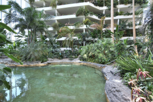 A tropical gallery, terraces and an indoor pool