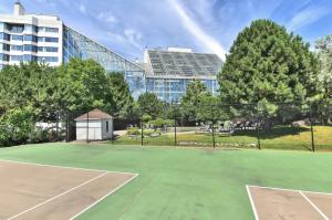 Tennis & Squash fields