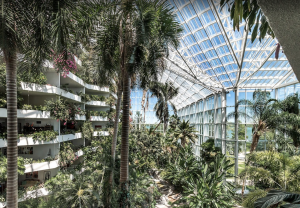 A tropical gallery inside